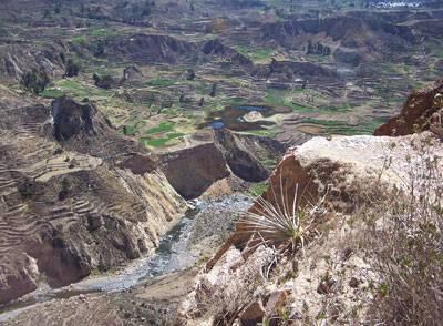 visite du canyon de Colca